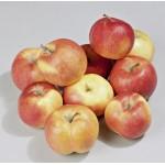 Яблоки (сетка)