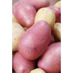 Картофель красный мытый FINE LIFE, 2,5кг