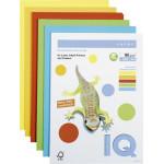 Цветная бумага IQ COLOR Maestro 5цв,  250л