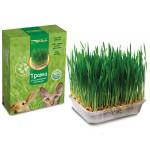 Травка для домашних питомцев TRIOL, 120г
