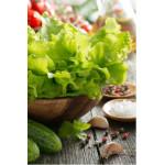 Салат листовой Премиум, горшочек
