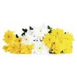 Букет хризантем, 5 шт