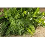 Набор зелени: лук зеленый, петрушка, укроп, 100г
