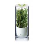 Емкость для хранения зелени