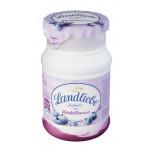 Йогурт LANDLIEBE с черникой, 150 г