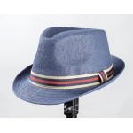 Шляпа мужская RICСARDO RICCI