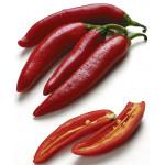 Перец красный чили (Лоток)