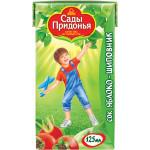 Сок САДЫ ПРИДОНЬЯ Яблоко-шиповник, 125 мл