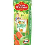 Сок САДЫ ПРИДОНЬЯ Морковь-яблоко прямого отжима, 0,2 л