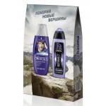 Подарочный набор гель для душа FA + шампунь SHAUMA