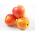Яблоки ЧЕМПИОН (СЕТКА)
