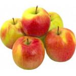 Яблоки ФЛОРИНО