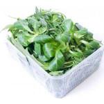 Микс салатов Руколла + Корн, 125 г
