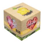 Чай BEFRUITBE С кусочками ананаса и соком ананаса черный в коробке, 50 г